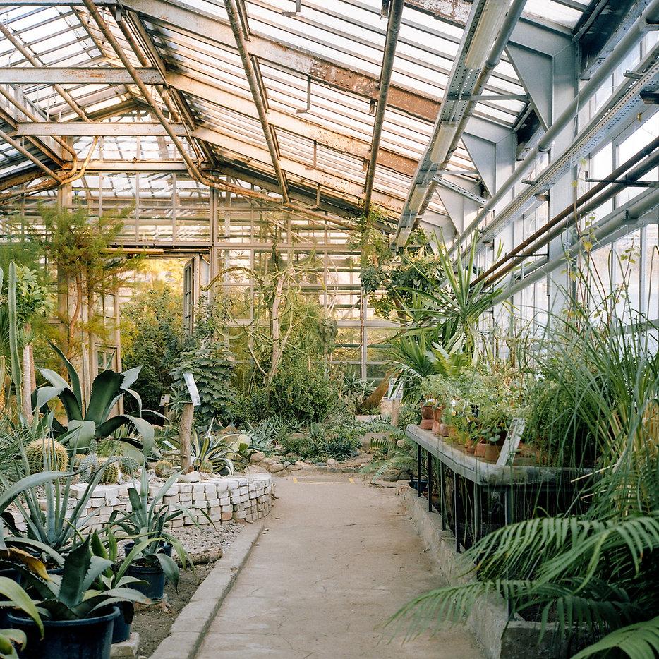 Botanical Greenhouse