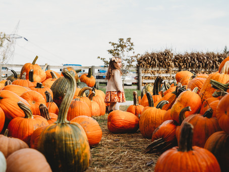 Tips to make your Halloween more sustainable!