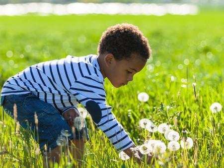 Meu filho deve receber pensão alimentícia até qual idade?