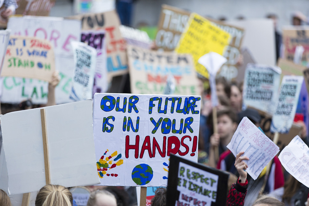 """Protest placard sign reading """"Our future is in your hands"""""""