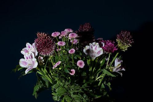 Wildblumen Duftzauber