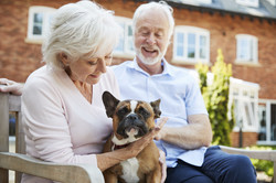 Older Couple with Dog | Angel Heart Home Care | The Best Care For Your Loved Ones