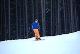 Rückansicht des Skifahrers
