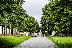 A Park in Munich
