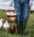 Bauer mit Bio-Eiern
