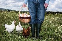 Farmář s bio vejce