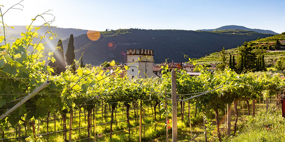 Drinking with Culture: Tuscany Wine Tasting