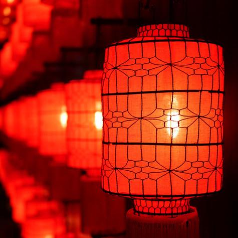 Año nuevo chino: comienza el año del buey