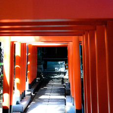 京都府 感染リスクを低減するための取組について(10月1日~)