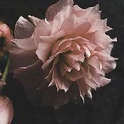 Arreglos florales artificiales/ flor seca. floristeria en valencia la alqueria