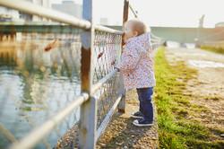 Enfant contemplant la Seine