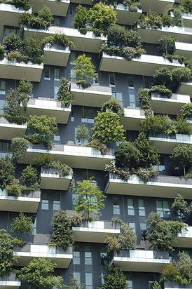 environmental-consultants-business-london