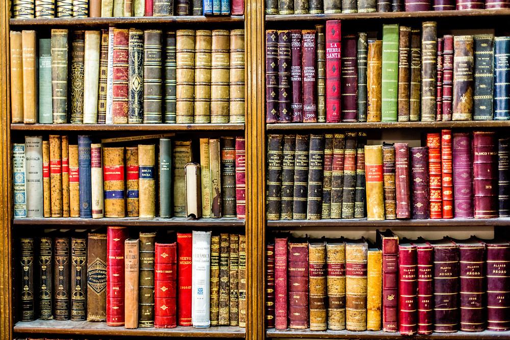world book day bookshelf