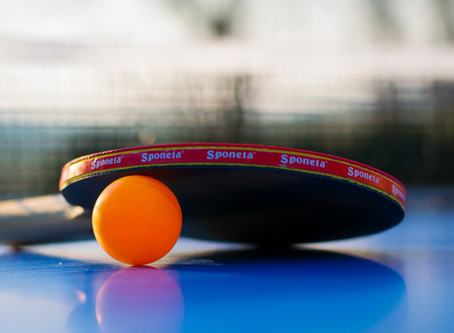 Games You Can Play With The DREQA Ping Pong Net