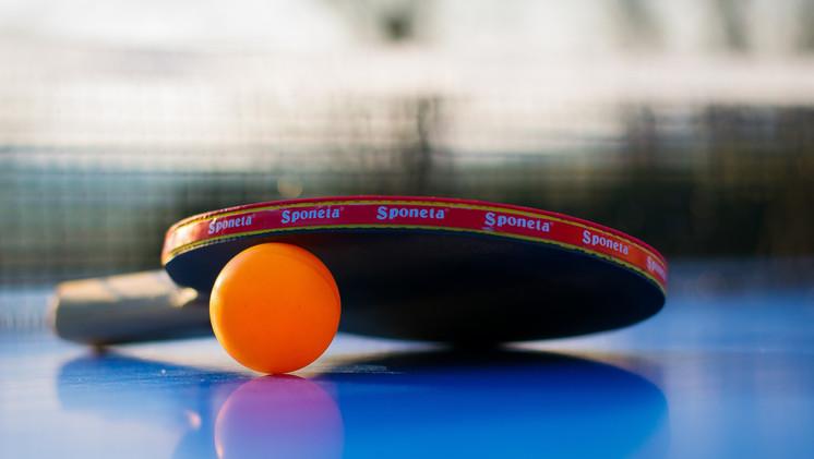 Tennis table at Mas Saint-Gens, Provence