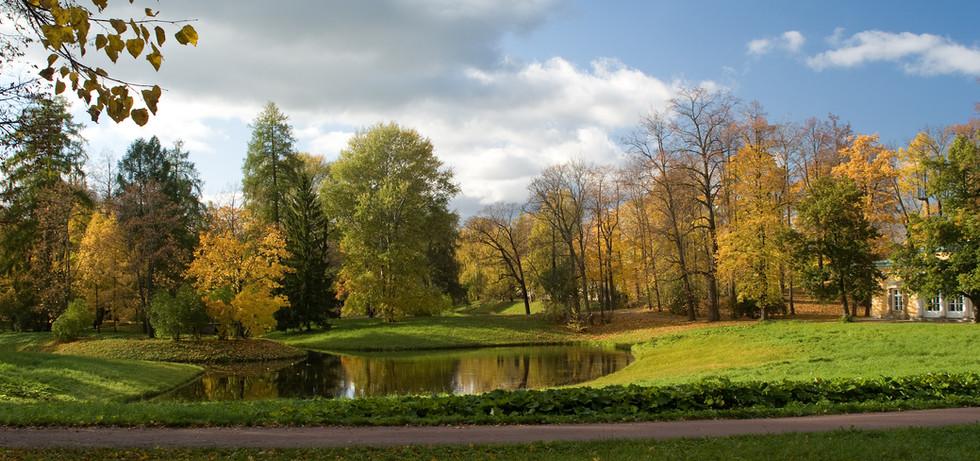 Parc - Bassin