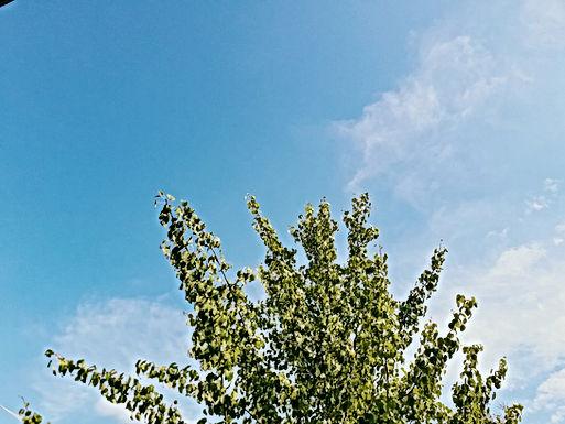 WEERBERICHT: Veel zon in het weekend, maar iets frisser