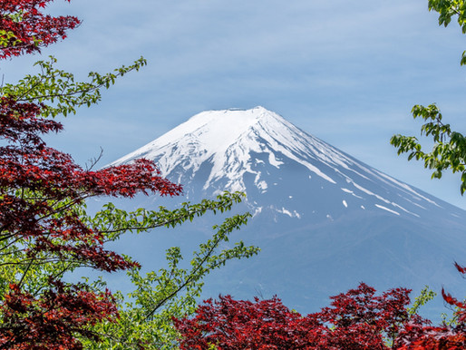 Japan scheduled to commit to net zero by 2050