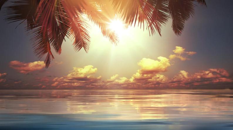 Paradise Serenity