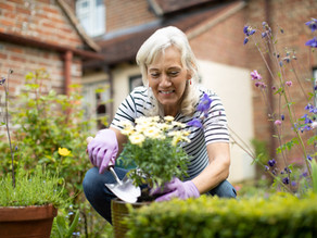 HOW TO MOVE YOUR GARDEN
