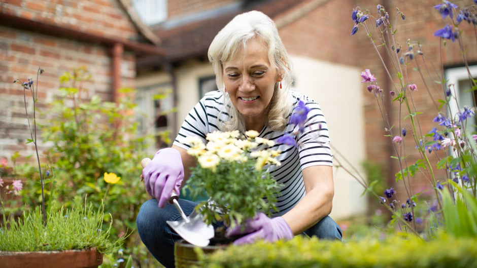 The Reason  Why Gardening Can Be Good for Your Mental Health