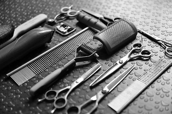 Pet Grooming Tools.