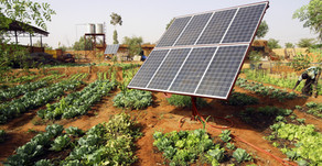 What is Solar EPC? What they do?