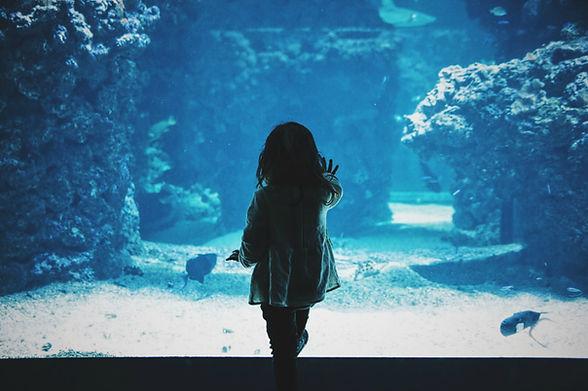 At the Aquarium