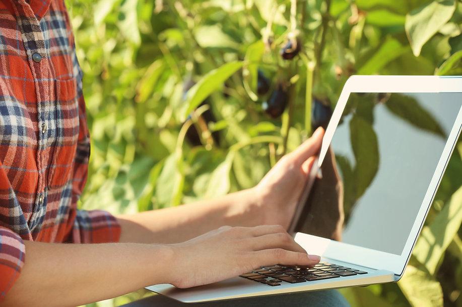 En la computadora portátil