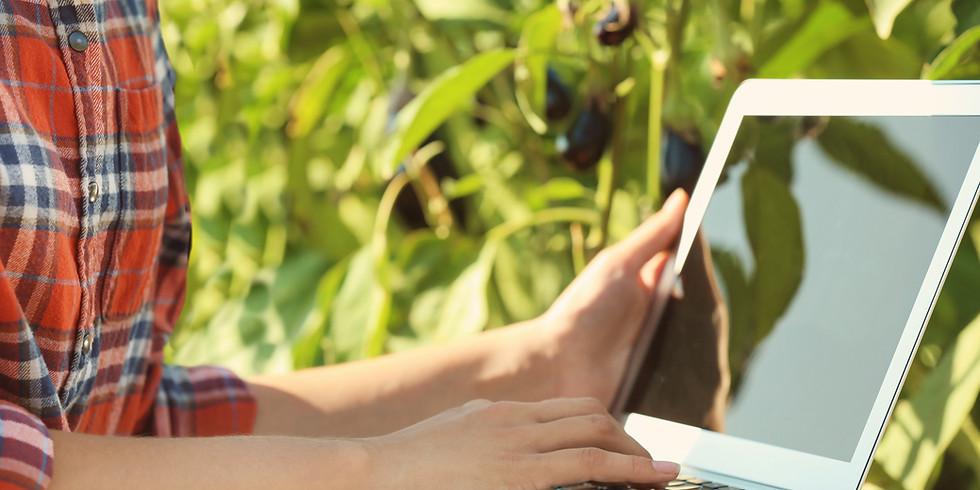 Online-Austausch: Kommunikation mit Behörden