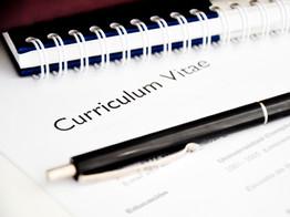 CV Writing & Job Support
