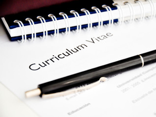 CV Writing & Job Support