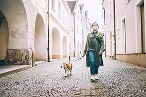 犬を連れて散歩をしている