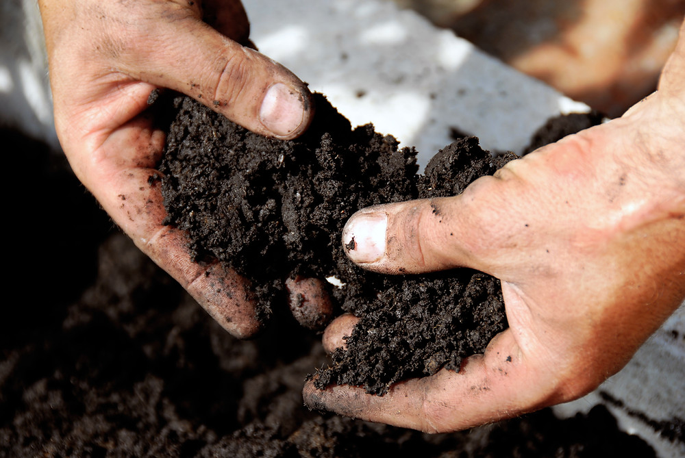 hands holding handfuls of a dark, crumbly soil