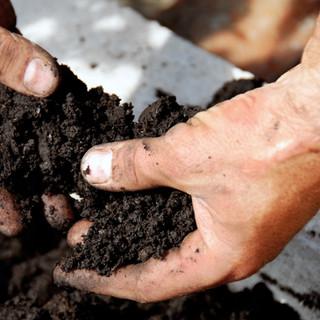 Nutrient and Pest Management Program