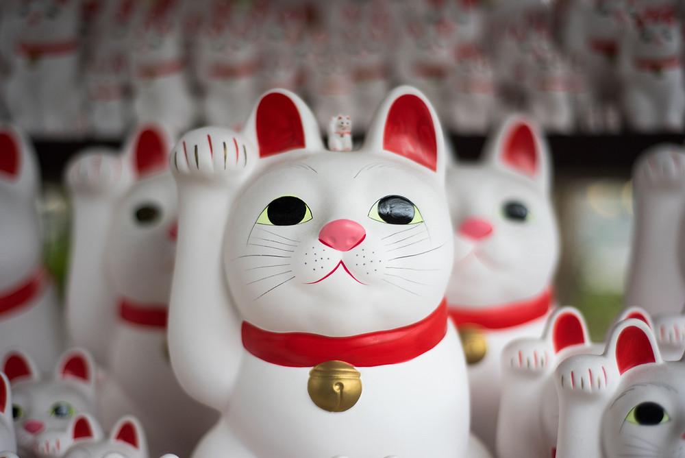 幸せ招く猫