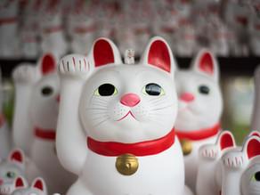 Manekineko: Chi è il gatto più famoso del Giappone?