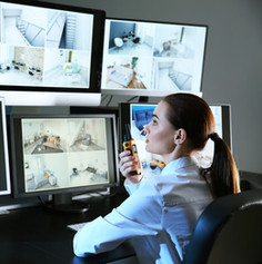 Security Monitoring Screens