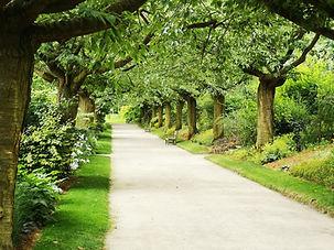 Parc verdoyant