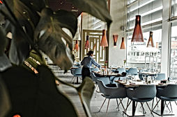 חנות להשכרה בראשון לציון לייצור מזון, בצקים, קייטרינג או בית קפה.כולל חנייה בשפע.