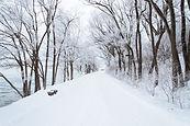 Nieve de invierno