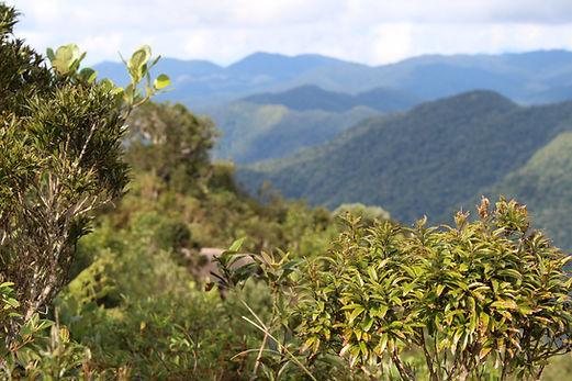 Vista das montanhas