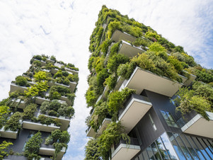 What Can You Do Towards Sustainability This Financial Year?