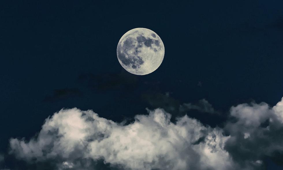 12 Dark Moon Readings Subscription