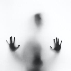 The Shadow Self