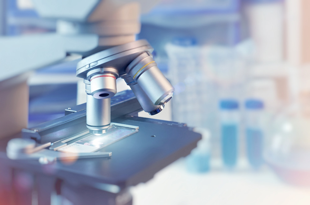 RSW: los microscopios de última generación son esenciales