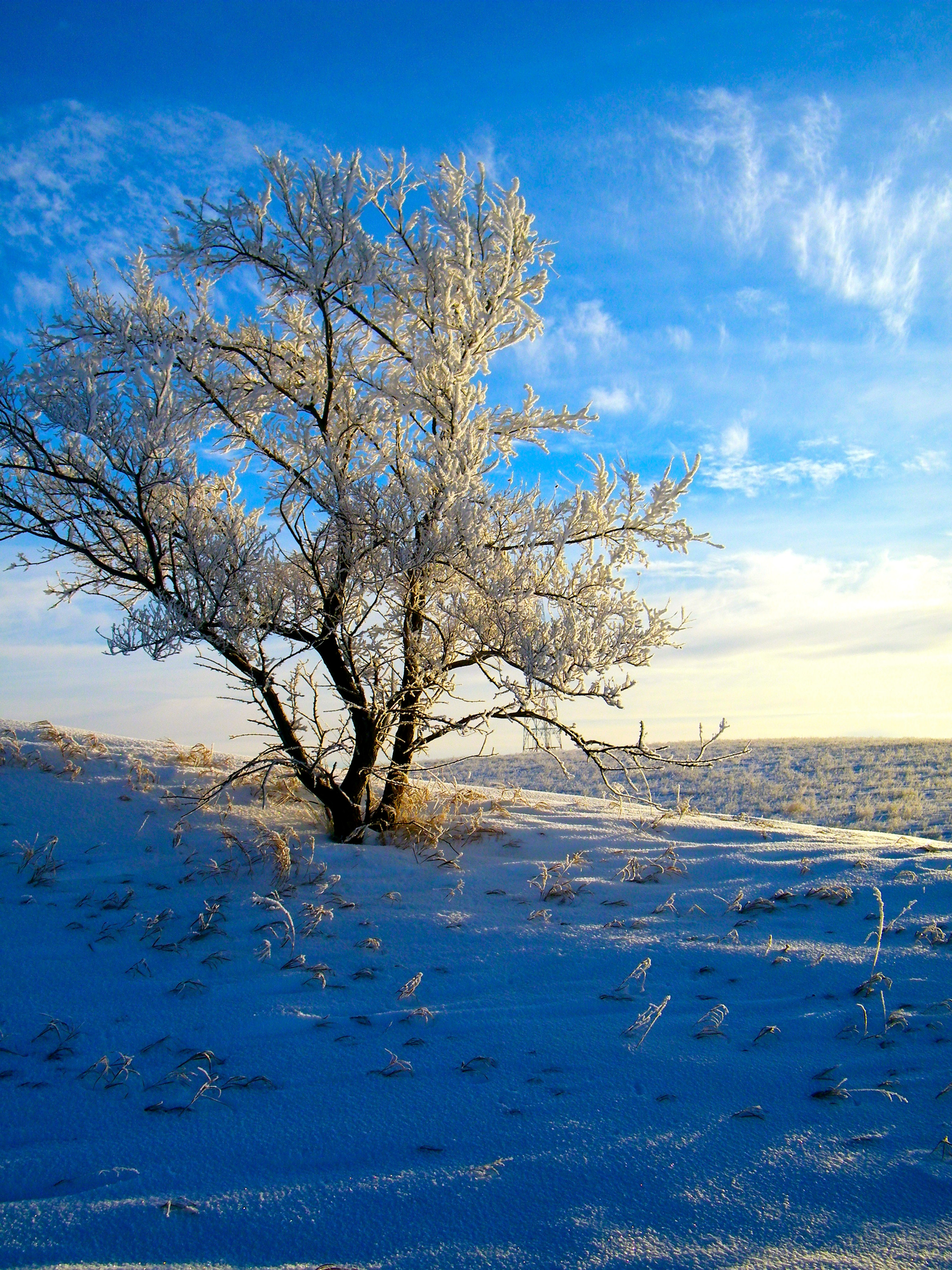 Waitlist - Winter 2022 ERP Foundations I