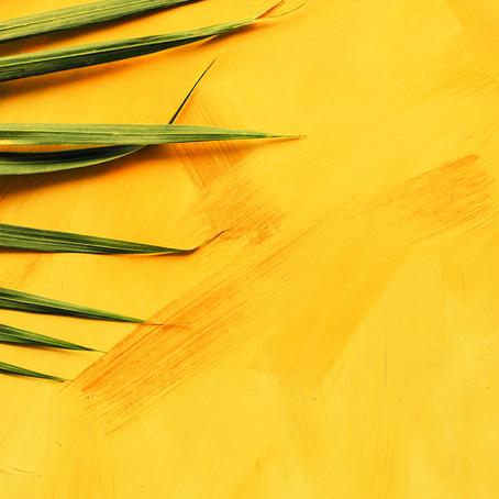 Carton ... jaune