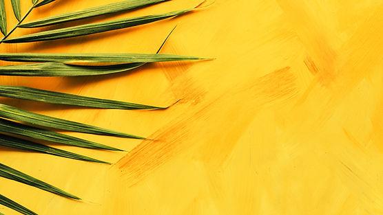 parede amarelo