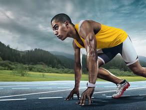 筋肉の深掘り、筋構造